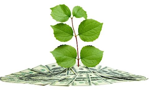 Green Banks