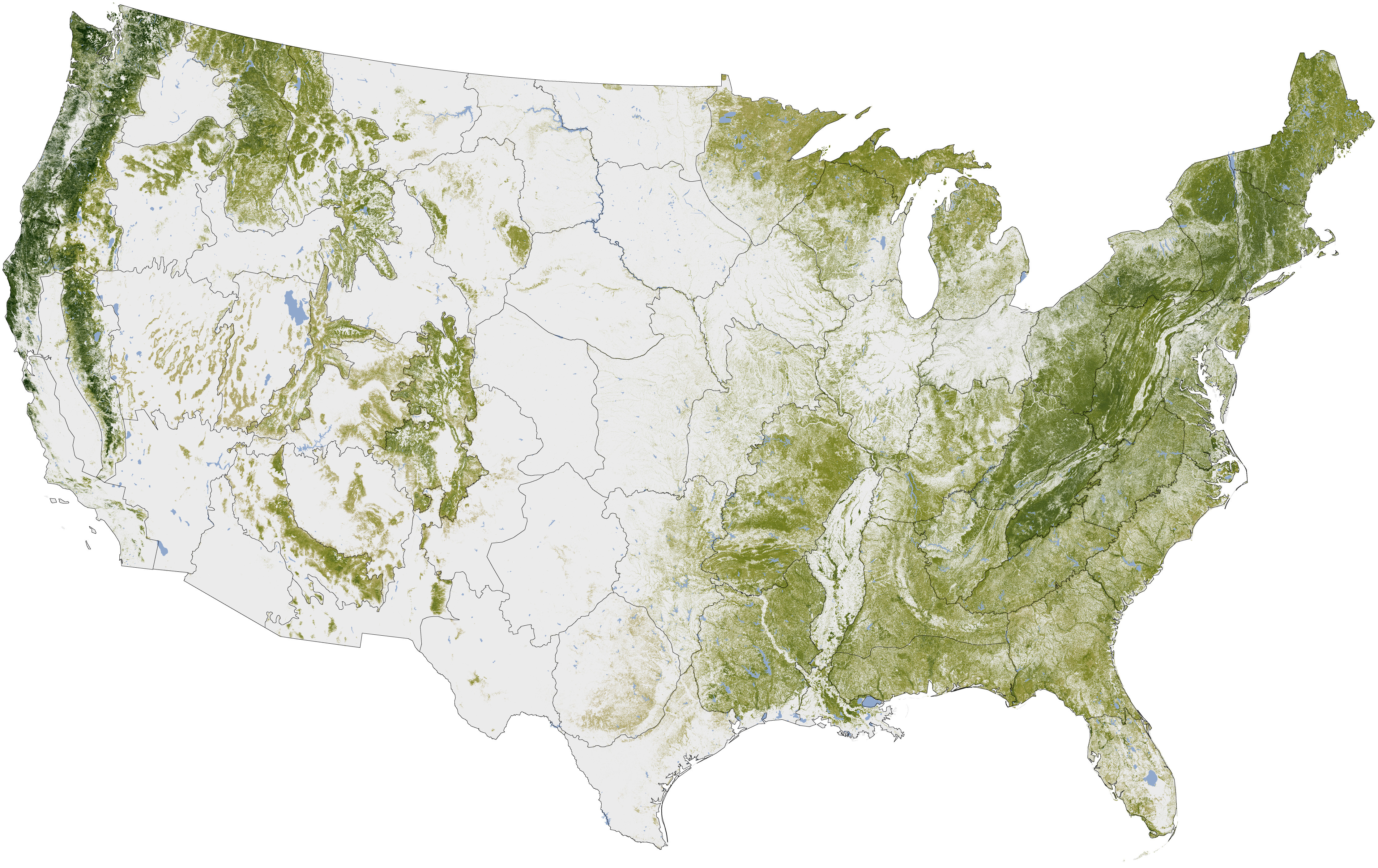 NASA Shows That U.S. Green Tree Coverage Is Less Than Ideal