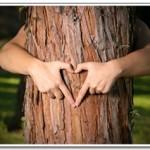 tree-150x150.jpg