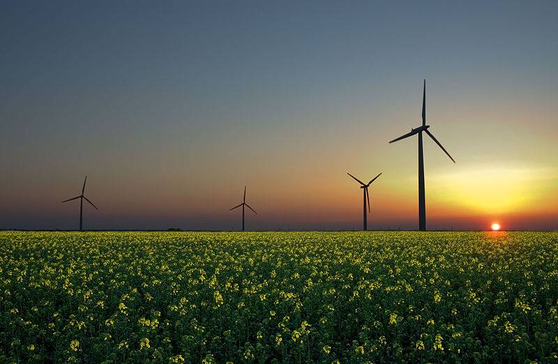 The wind, Sun, and biomass are three renewable energy sources.