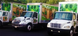 Help Yourself and the Environment by Making Your Move More Eco-Friendly