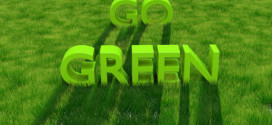 How to Stay Green on a Tight Budget