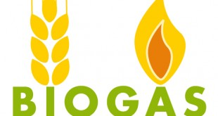 Biogas is a growing aspect of the renewable energy field in the US (Image from http://energyfortomorrow.yolasite.com/biogas.php)