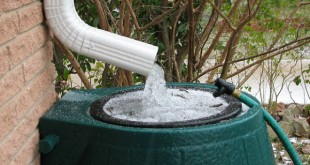 Rainwater collection offers several personal and environmental benefits. (Image from http://www.propertymanagementinsider.com/the-sunny-side-of-rainwater-harvesting-for-property-managers)